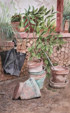 Empty Pots And An Old Umbrella